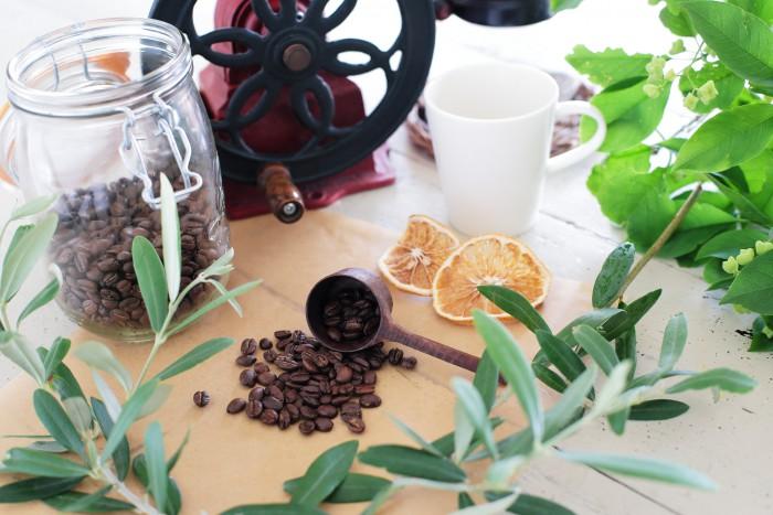 コーヒー豆とグリーン